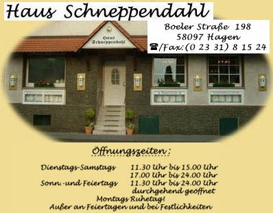 Banner Schneppendahl